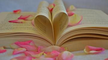 读书的重要意义,高清壁纸,摄影图片,静物写真-好运图库