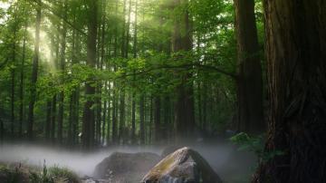 自然风景-风景图片-好运图库