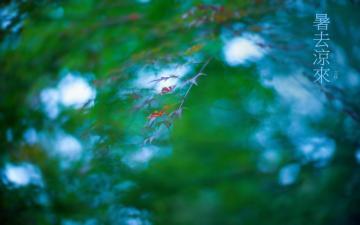 二十四节气立秋唯美自然风光-高清图片-好运图库