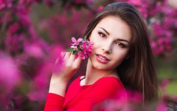 春天是为你而开的花高清壁纸-好运图库