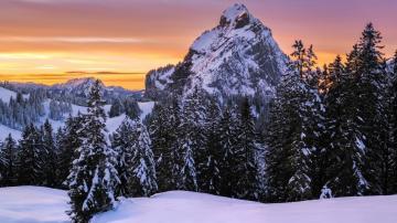 冬季残歌,寒风萧瑟高清壁纸-好运图库