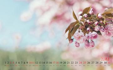 2018年3月桃花日历,农历,月历壁纸-好运图库