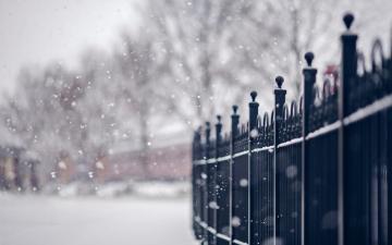 雪花飘飘,高清壁纸,风景图片-好运图库