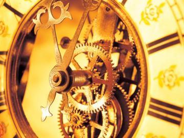 千年生物图集【第二篇】时间钟表专区,高清壁纸,图片,时光记忆-好运图库