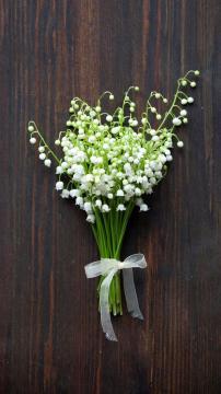 如何制作迷你花束?,锁屏图片,手机壁纸,植物-好运图库
