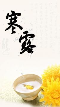 寒露是菊的月份,锁屏图片,高清手机壁纸,另类-好运图库