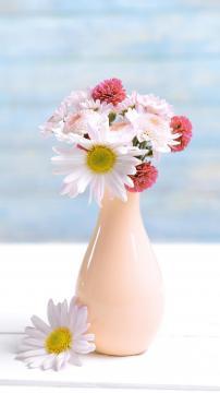 傲骨菊花,锁屏图片,高清手机壁纸,另类-好运图库