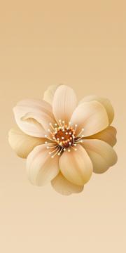 小米6X流沙金花朵内置壁纸,锁屏图片,高清手机壁纸,标志-好运图库