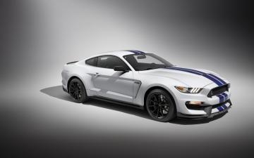 2018款福特野马谢尔比GT350,高清图片,汽车壁纸-好运图库