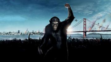 《猩球崛起》,剧照图片,高清壁纸,欧美影视-好运图库