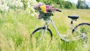 久违的自行车,高清壁纸,摄影图片,静物写真-好运图库