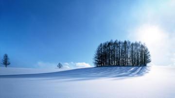 冬天沐浴在阳光之下的雪原,高清壁纸,风景图片-好运图库