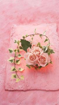 娇嫩的玫瑰,锁屏图片,手机壁纸,植物-好运图库