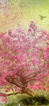 一棵粉色花树,锁屏图片,高清手机壁纸,另类-好运图库