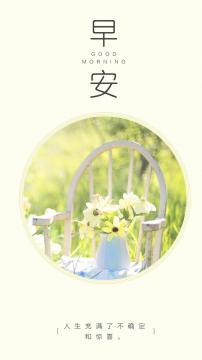 清新花朵唯美阳光早安,锁屏图片,高清手机壁纸,另类-好运图库