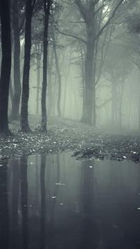 恐怖迷雾高清手机壁纸-好运图库