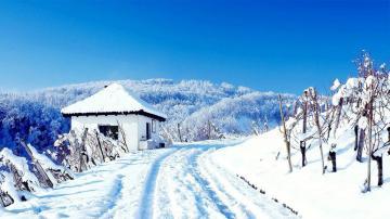 唯美的冬天雪景,高清壁纸,风景图片-好运图库