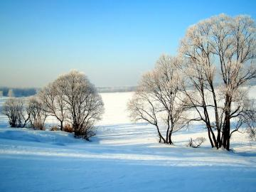 唯美冬天,高清壁纸,风景图片-好运图库