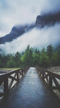 森林河流穿越山雾,锁屏图片,高清手机壁纸,风景-好运图库