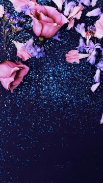 粉红色的闪光玫瑰,锁屏图片,高清手机壁纸,风景-好运图库