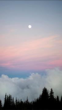 月亮在森林谷云,锁屏图片,高清手机壁纸,风景-好运图库