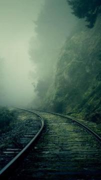 有雾的森林火车轨道,锁屏图片,高清手机壁纸,风景-好运图库