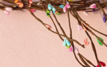 浆果和花朵暖色桌面壁纸-好运图库