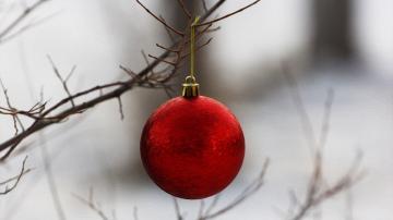 树枝上的圣诞球-好运图库