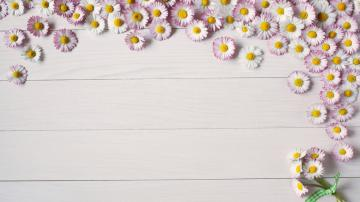 木板上的花朵-好运图库