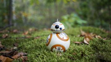 树林里的机器人-好运图库