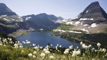 雪山河流草地与花朵-好运图库