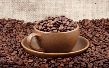 桌子上的咖啡豆与杯子-好运图库