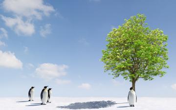 雪地大树与企鹅-好运图库