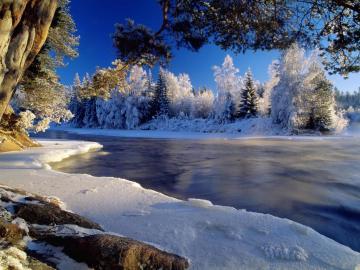 冬季树林河流与雪地
