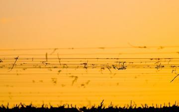 黄昏天空风景壁纸