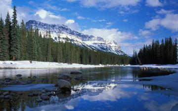 雪山森林河流风景